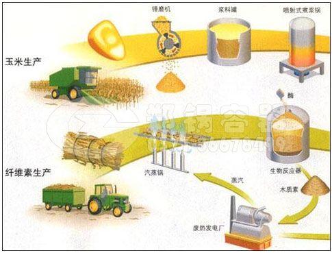 生物质燃料锅炉市场前景.jpg