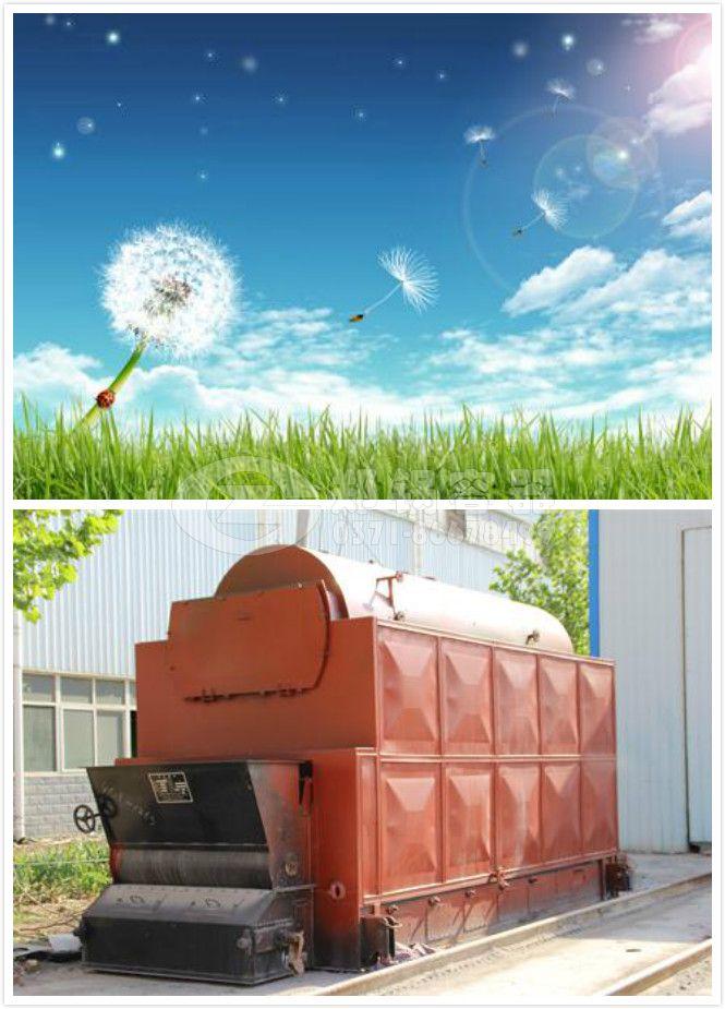25吨生物质锅炉